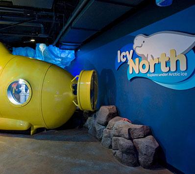 Polar Play Zone Submarine