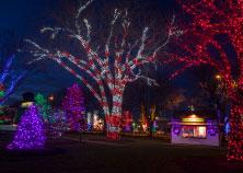 Rosemont Christmas 1